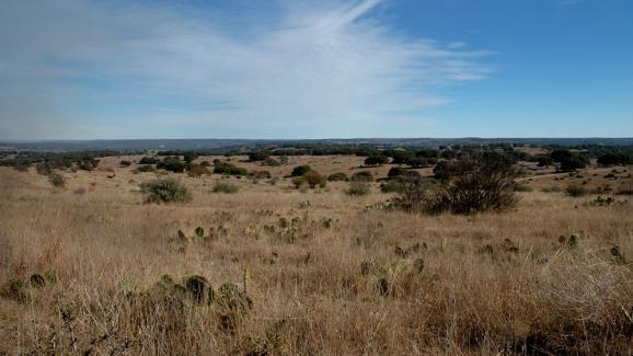 1709 Farm Road 2035, Sweetwater, TX 79556 (MLS #201803327) :: Lyons Realty