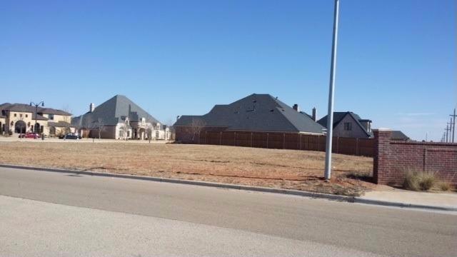 4007 S 113th Street, Lubbock, TX 79423 (MLS #201807265) :: Lyons Realty