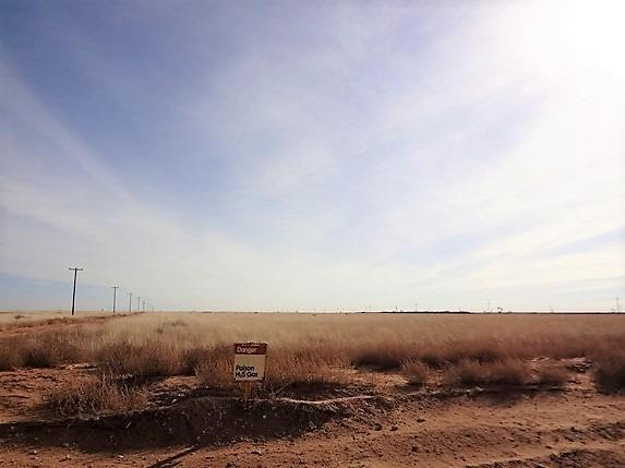 3700 W Houston Street, Levelland, TX 79336 (MLS #201900778) :: Stacey Rogers Real Estate Group at Keller Williams Realty