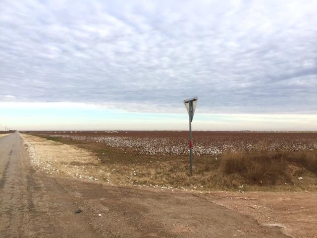 0 Farm Road 2192, Wilson, TX 79381 (MLS #201901942) :: Lyons Realty