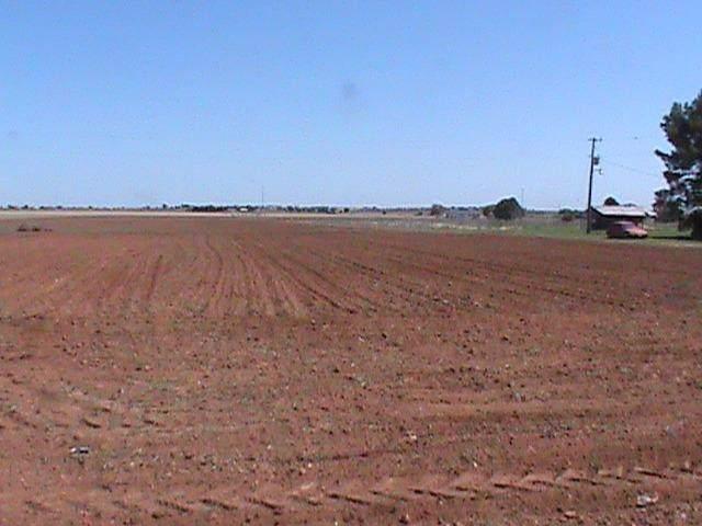 1710 Farm Road 41, Lubbock, TX 79423 (MLS #201907982) :: The Lindsey Bartley Team