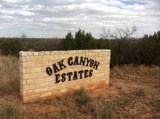 15 Oak Canyon, Lake Alan Henry, TX 79330 (MLS #201909756) :: The Lindsey Bartley Team