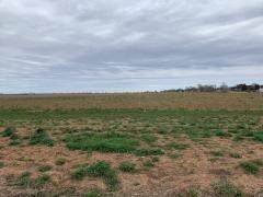 0 Farm Road 1294, Shallowater, TX 79363 (MLS #202002345) :: Lyons Realty