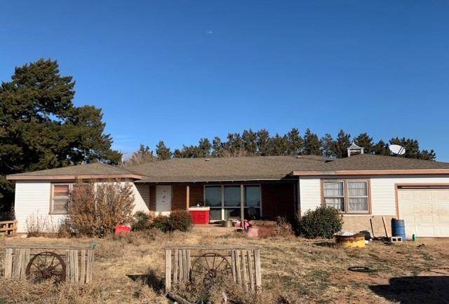 211 County Road 229, Hart, TX 79043 (MLS #202002422) :: Stacey Rogers Real Estate Group at Keller Williams Realty