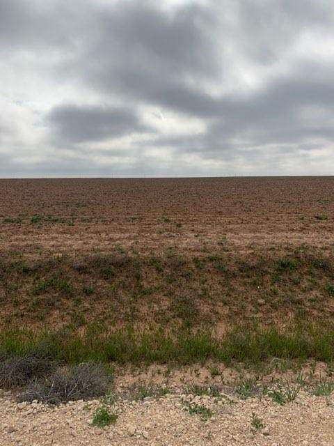 0 County Road 130, Ralls, TX 79357 (MLS #202003708) :: Better Homes and Gardens Real Estate Blu Realty