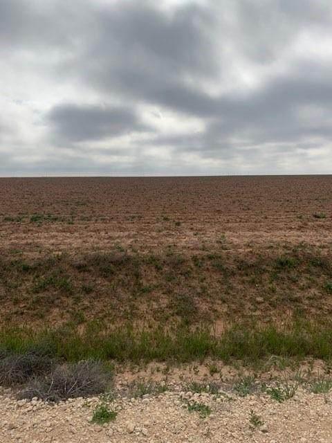 0 County Road 130, Ralls, TX 79357 (MLS #202003708) :: Lyons Realty