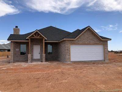 7011 22nd Place, Lubbock, TX 79407 (MLS #202003721) :: The Lindsey Bartley Team