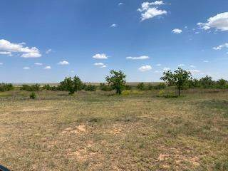 16126 N County Road 3600, Idalou, TX 79329 (MLS #202005939) :: Better Homes and Gardens Real Estate Blu Realty