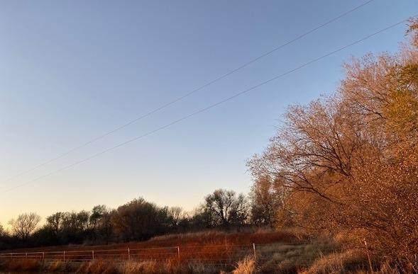 0 Farm Road 643, Girard, TX 79518 (MLS #202101935) :: The Lindsey Bartley Team