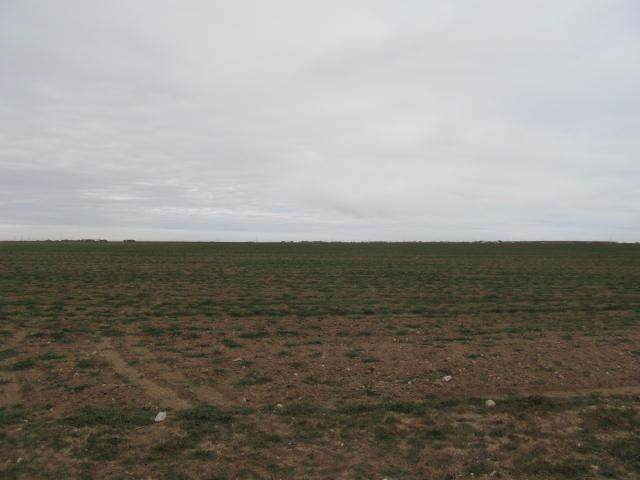 0-Tract 9 County Road 7500, Lubbock, TX 79424 (MLS #202101991) :: The Lindsey Bartley Team