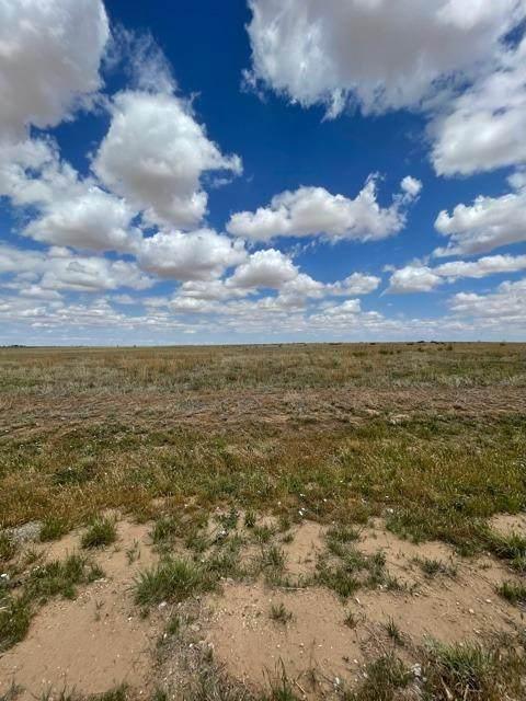 11104 N Farm Road 400, Idalou, TX 79329 (MLS #202105092) :: Duncan Realty Group