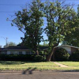 3314 42nd Street, Lubbock, TX 79413 (MLS #202006088) :: McDougal Realtors