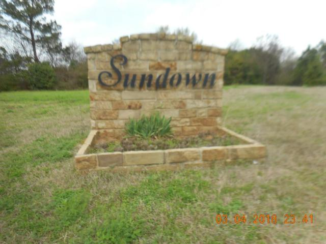 Lot 2 Sundown Drive, Nacogdoches, TX 75965 (MLS #56098) :: The SOLD by George Team