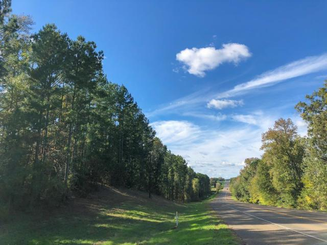 61 Ac Hwy 204, Jacksonville, TX 75766 (MLS #57456) :: The SOLD by George Team