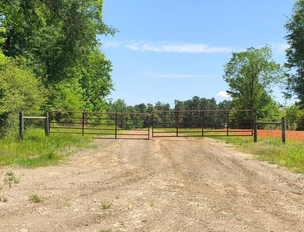 96 Ac Fm 227, Grapeland, TX 75844 (MLS #57458) :: The SOLD by George Team