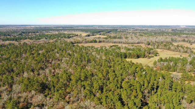 000 Cr 4160 & Cr 4202, Lovelady, TX 75851 (MLS #57468) :: The SOLD by George Team