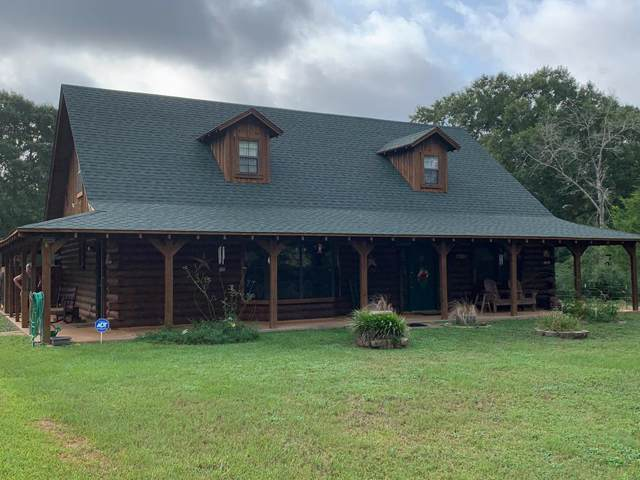 1074 Cr 217, Nacogdoches, TX 75961 (MLS #58861) :: The SOLD by George Team