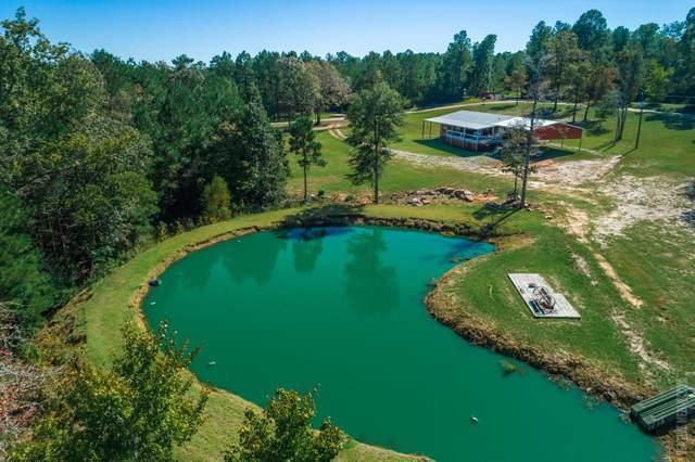 806 Deer Park Drive, Brookeland, TX 75931 (MLS #59288) :: The SOLD by George Team