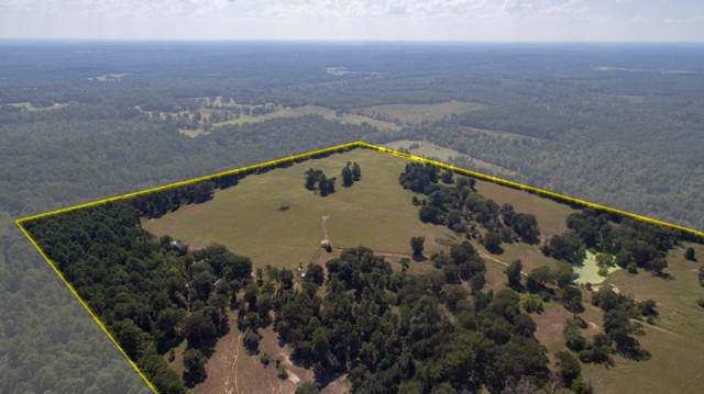 0 Fm 1911, Alto, TX 75925 (MLS #59514) :: The SOLD by George Team