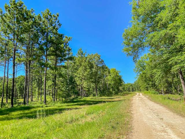 677 AC Hwy 69, Alto, TX 75925 (MLS #60614) :: The SOLD by George Team