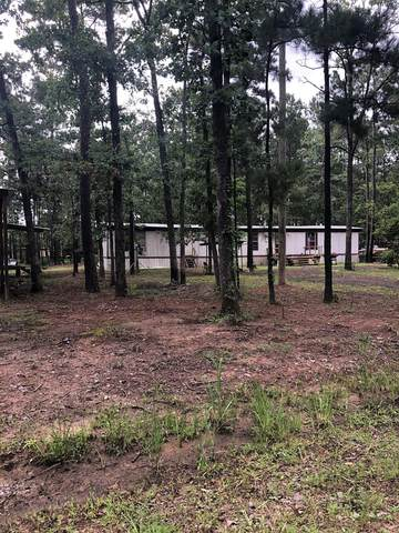 299 Cr 480, Broaddus, TX 75929 (MLS #62564) :: The SOLD by George Team