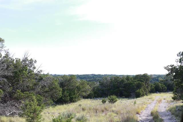 00 Hwy 83, Junction, TX 76849 (MLS #62850) :: The SOLD by George Team