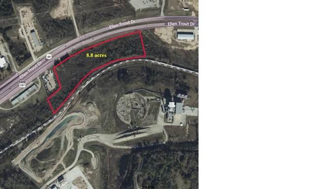 TBD Ellen Trout Drive, Lufkin, TX 75904 (MLS #63537) :: The SOLD by George Team