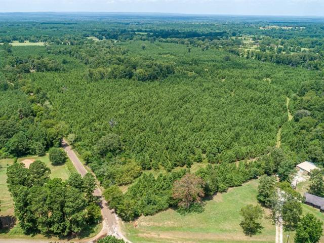 0 Cr 886, Douglass, TX 75943 (MLS #58775) :: The SOLD by George Team