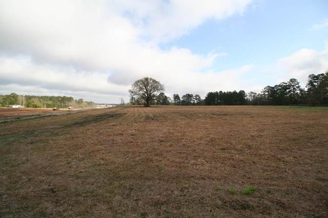 732 Barge, Zavalla, TX 75780 (MLS #59908) :: The SOLD by George Team