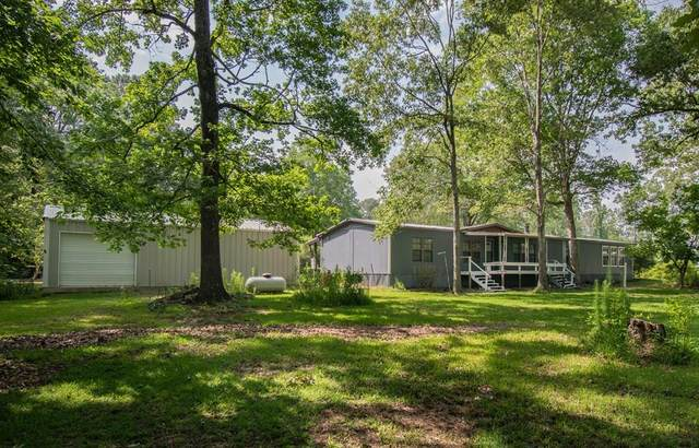 397 Cr 4800, Broaddus, TX 75929 (MLS #60439) :: The SOLD by George Team