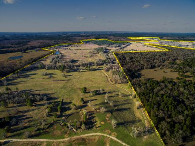 1101 Ac Cr 3470, Lovelady, TX 75851 (MLS #59766) :: The SOLD by George Team