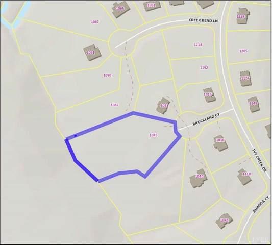 0 Ivy Creek Estates, Forest, VA 24551 (MLS #244746) :: Hopkins Real Estate Group