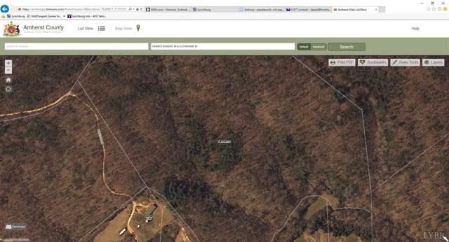0 Maddox Ln., Amherst, VA 24521 (MLS #304629) :: Hopkins Real Estate Group