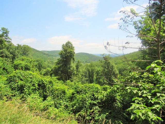 0 Ball Mountain Road, Schuyler, VA 22969 (MLS #312558) :: Hopkins Real Estate Group