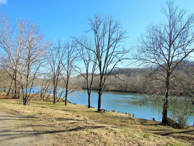 3 Ledinghams Landing, Monroe, VA 24574 (MLS #315997) :: Hopkins Real Estate Group