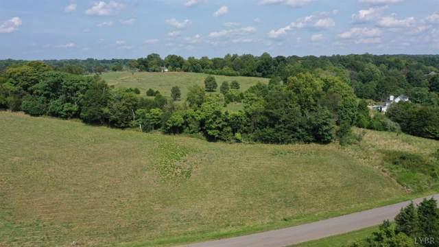 0 Deer Hollow Road, Forest, VA 24551 (MLS #320346) :: Hopkins Real Estate Group