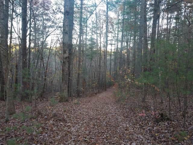 0 Blue Ridge Lane, Monroe, VA 24574 (MLS #321945) :: Hopkins Real Estate Group