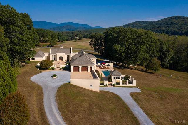 1209 Sycamore Creek Drive, Goode, VA 24556 (MLS #322001) :: Hopkins Real Estate Group