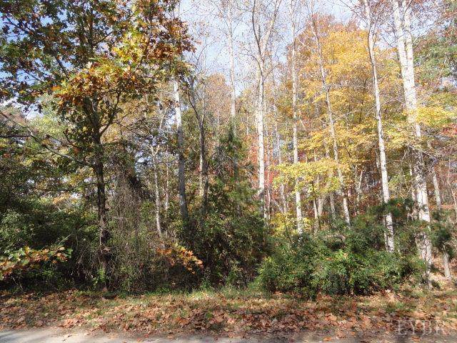 0 Windsor Forest Drive, Concord, VA 24538 (MLS #316944) :: Hopkins Real Estate Group