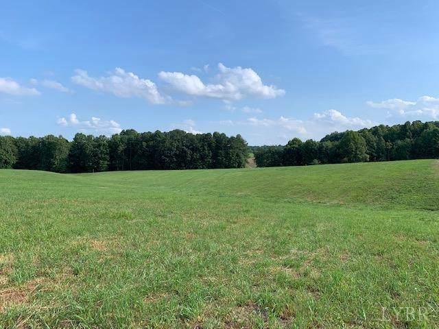 0 Lot 3 Police Tower Rd, Appomattox, VA 24522 (MLS #319703) :: Hopkins Real Estate Group