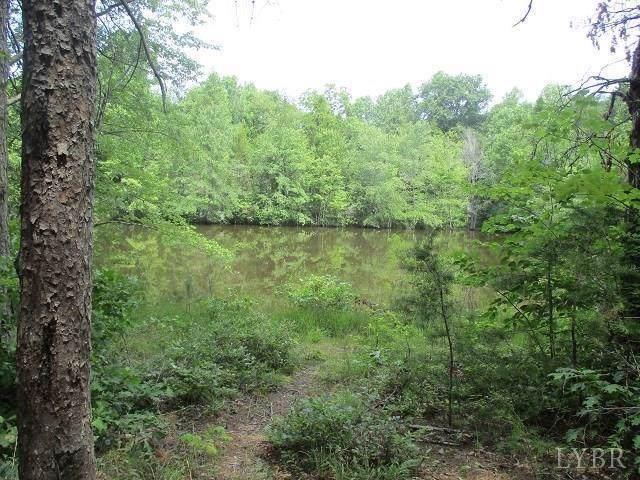 0 Lot A Sycamore Creek Rd, Buckingham, VA 23921 (MLS #322048) :: Hopkins Real Estate Group