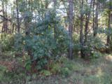 Lot 136 Pine Ln - Photo 12