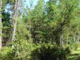Lot 136 Pine Ln - Photo 13