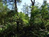 Lot 136 Pine Ln - Photo 16