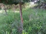 33.4 Ac Oak Mound Rd - Photo 26