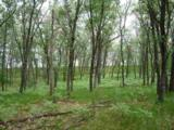 L3 Timber Ridge Ln - Photo 4