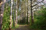 L35 Ox Trail Way - Photo 12