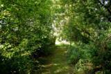 L35 Ox Trail Way - Photo 15