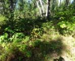 L209 Timber Tr - Photo 16