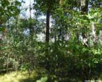 L209 Timber Tr - Photo 18